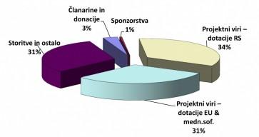 Struktura prihodkov društva v letu 2013