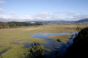 Dolenja blata s pogledom proti Cerknici