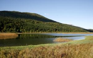 Mokrišča v okolici Rešeta