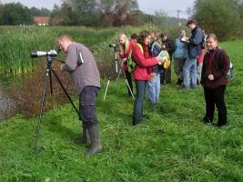 Ornitološki izlet in opazovanje ptic na Hraških mlakah