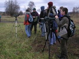 Ornitološki izlet na Rudniško jezero pri Kočevju