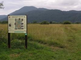 Vlažni travniki v naravnem rezervatu Iški morost
