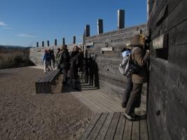 Opazovalnica ob učni poti po Škocjanskem zatoku