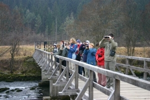 Ornitološki izlet na Šobec in opazovanje ptic na reki Savi