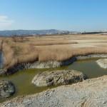 Poglobitve dna za vodno površino pred centrom za obiskovalce, foto: Borut Mozetič