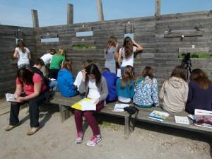 V okviru vzgojno-izobraževalnih skupin so bili najštevilčnejši učenci osnovnih šol , foto: Bojana Lipej