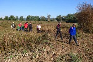 Opazovanja in obročkanja ptic v Zdravcih se je udeležilo 20 ljudi.