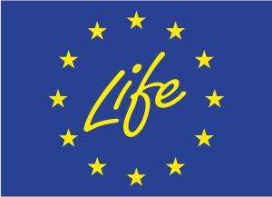 2018_11_7_life_logo
