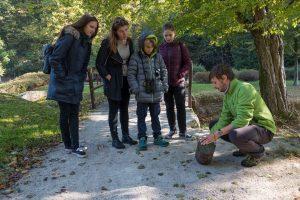 V parku smo tudi pogledali, kaj je ostalo v gnezdilnicah. V tej na fotografiji na žalost propadlo leglo plavčka z osmimi jajci. Foto: Eva Horvat