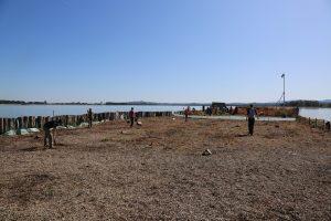 Z otokov smo odstranili vso vegetacijo in za seboj pustili le gol prod.. Foto: Damijan Denac