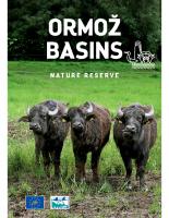 2017, Ormož Basins Nature Reserve