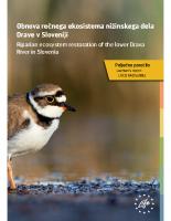 2017, Obnova rečnega ekosistema nižinskega dela Drave v Sloveniji