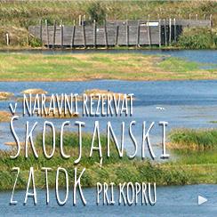 NR_SkocjanskiZatok_Link_244x244