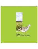 2007, Kosec, varuh vlažnih travnikov