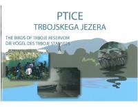 2007, Ptice Trbojskega jezera