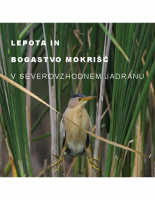 2008, Lepota in bogastvo mokrišč v severovzhodnem Jadranu (SLO)