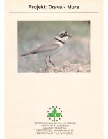 1995, Projekt: Drava – Mura