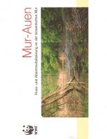 1999, Mur-Auen: Fluss- und Altarmrevitalisierung an der slowenischen Mur