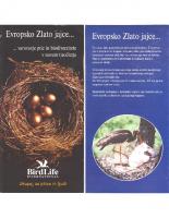 2001, Evropsko Zlato jajce … varovanje ptic in biodiverzitete v novem tisočletju