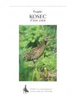 1998, Projekt: Kosec