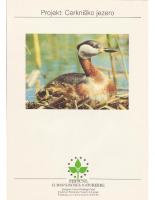 1993, Projekt: Cerkniško jezero