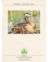 1993, Projekt: Cerknicer See