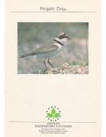 1994, Projekt: Drau