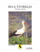 1999, Bela štorklja, ptica leta 1999