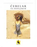1999, Čebelar na Bizeljskem