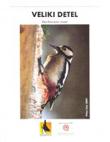 2001, Veliki detel, ptica leta 2001