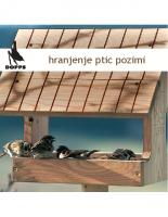 2009, Hranjenje ptic pozimi