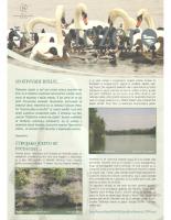 2006, Trbojsko jezero: naravoslovni informator