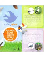 2008, Spring Alive!: Spremljaj prihod pomladi skupaj z nami!