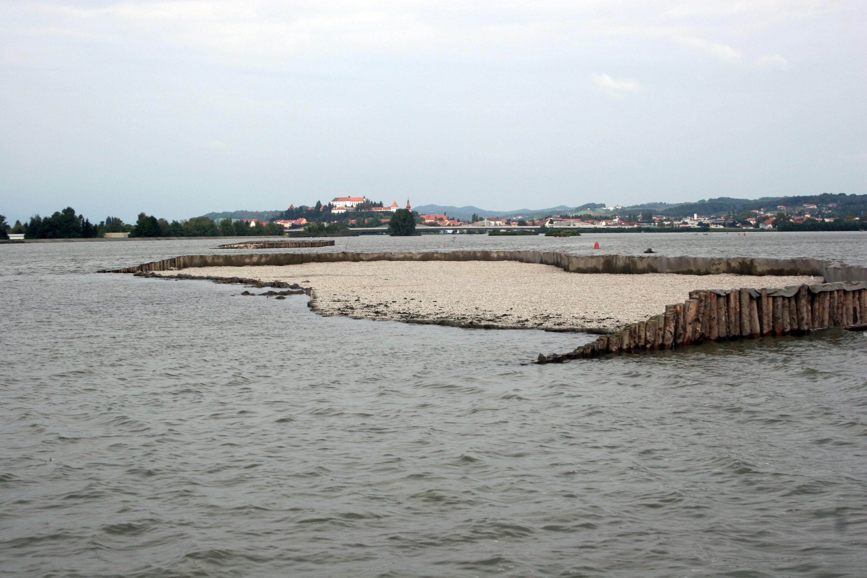 Nov gnezditveni otok
