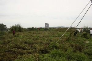Ptujski otok so najprej pokosili, nato pa odstranili vegetacijo.