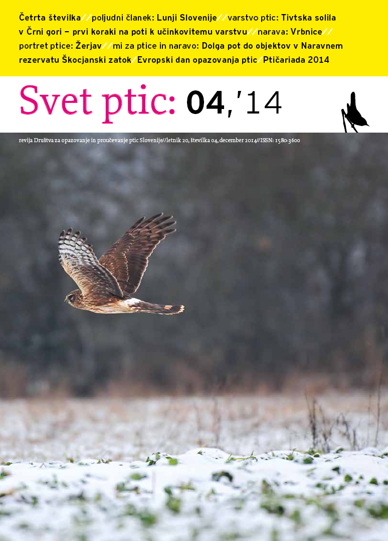 Zimska številka revije Svet ptic