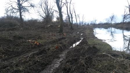 Uničili reko Iščico