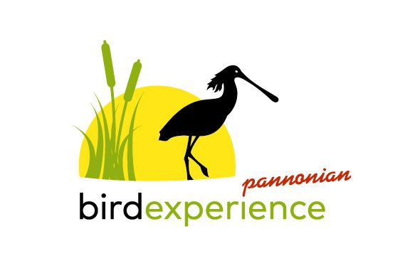 Bili smo na Pannonian Bird Experiance 2015!