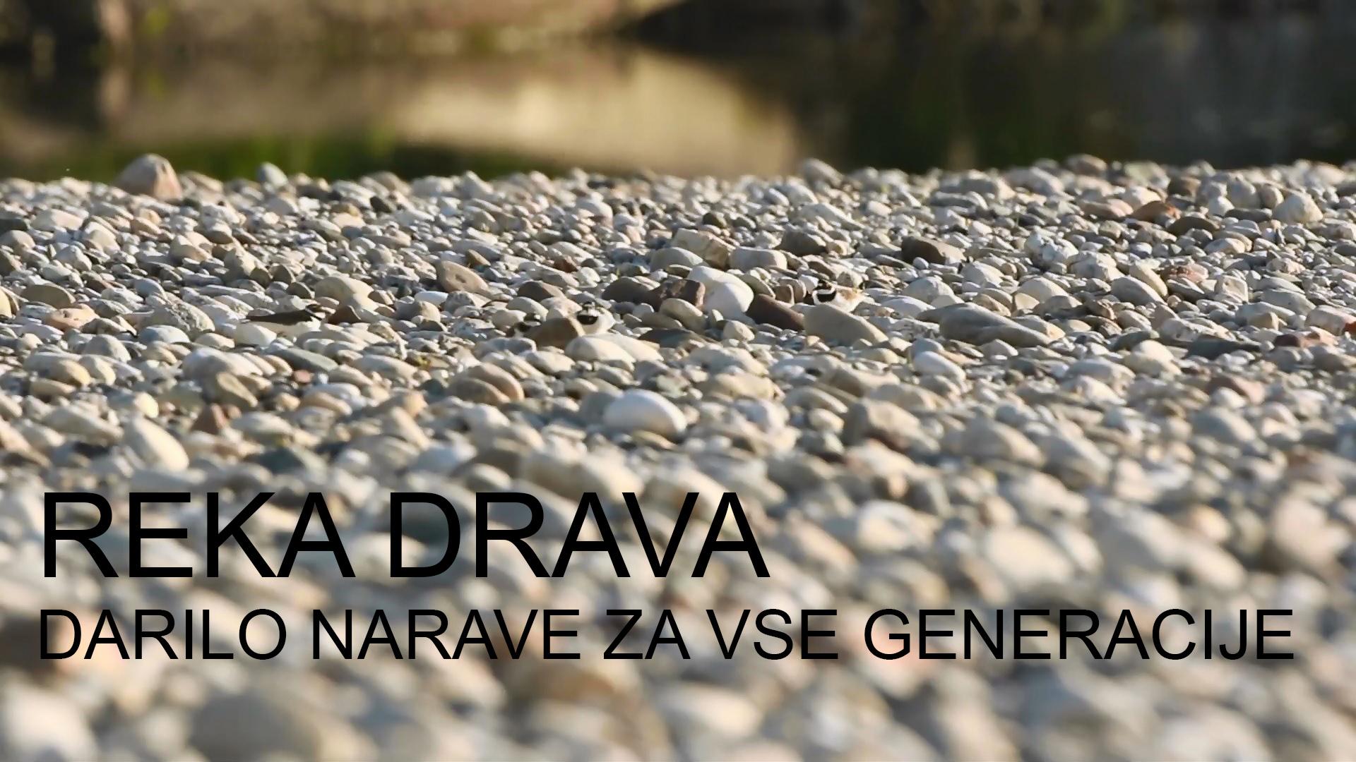 Reka Drava: darilo narave za vse generacije