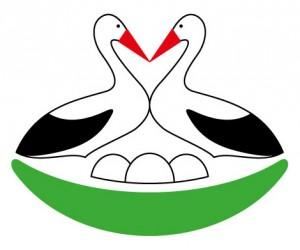 strk_logo_