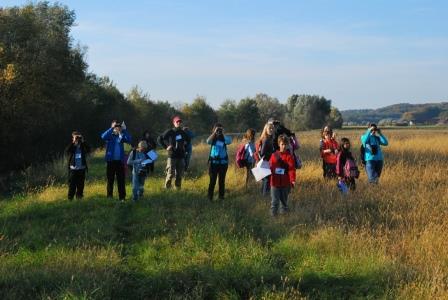 5. Pomurski ornitološki vikend letos v Negovi in okolici