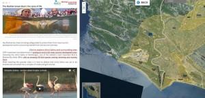 Na spletni strani »The Mediterranean Basin: the spice of life« (Mediteranski bazen: začimba življenja) lahko raziščete zemljevid, fotografije in videoposnetke projektov s celotnega območja Sredozemlja. http://birdlife.maps.arcgis.com/apps/MapJournal/index.html?appid=0370696a3e124396bf4954f5fefb09cc