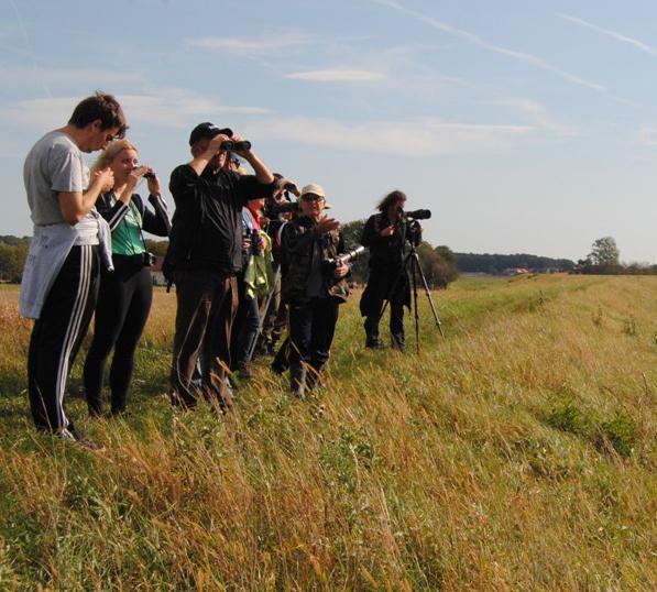 Evropski dan opazovanja ptic 2017