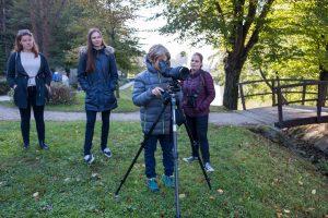 V Mariboru smo se podali spoznavat ptice Mestnega parka. Foto: Tilen Basle