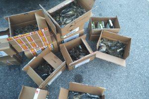 Ptice so bile spravljene v 15 škatlah med osebno prtljago. Foto: Tjaša Zagoršek