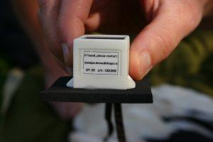 Štorklji smo namestili GPS sledilno napravo, ki jo štorklja nosi na hrbtu kot nahrbtnik. Foto: Damijan Denac