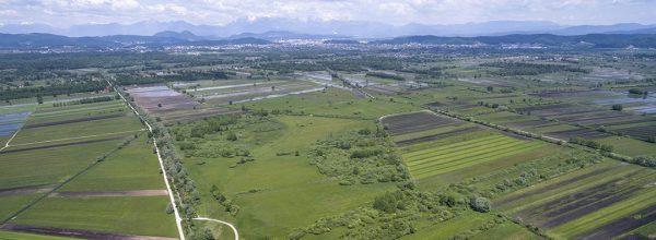 Bo nova definicija aktivnega kmeta ogrozila obstojih malih kmetov?