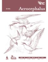 2020_24_03_Acrochepalus_180_181_web