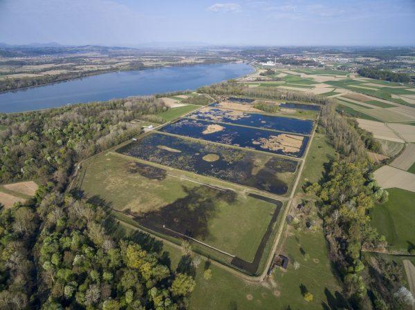 Naravni rezervat Ormoške lagune med finalisti za evropsko nagrado Natura 2000