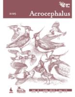 DOPPS_Acrochepalus_182_183_web